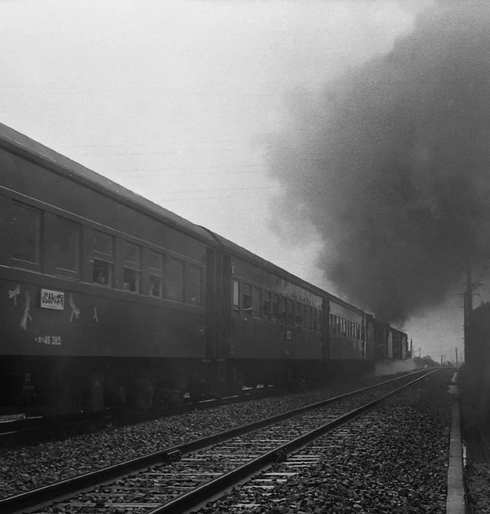 190908ts15.jpg