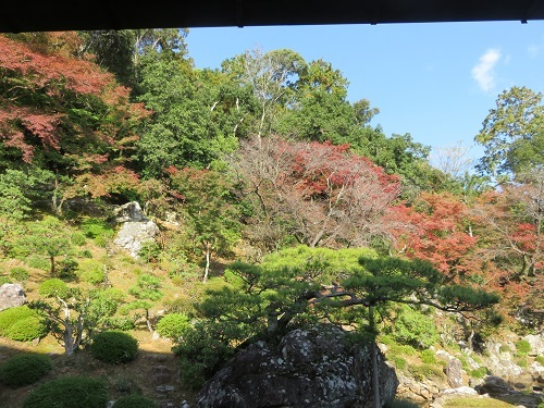 IMG_0860 竹林寺庭園