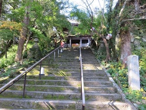 IMG_0868 竹林院