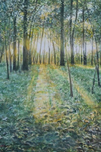 光りの林2