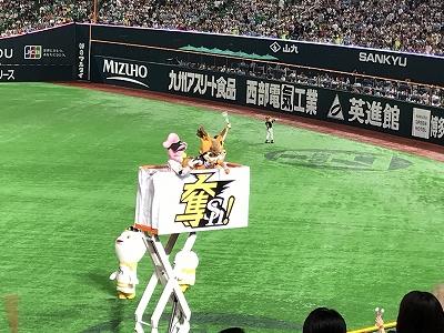 IMG_8718.jpg