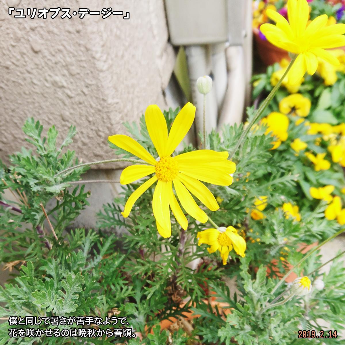 DSC_9729.jpg
