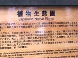 京都植物園1-5
