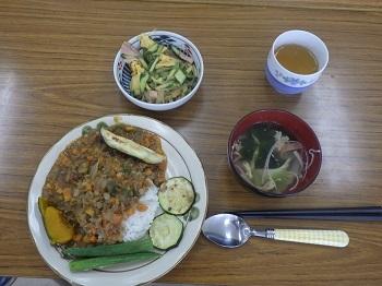 夏野菜カレー1-13