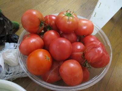 010719大玉トマト