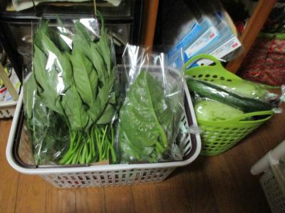 010720出荷用野菜