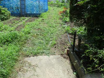010722草刈り1