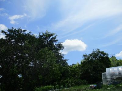 010722梅雨明けの空