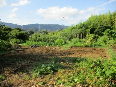 010727空の畑ナウ