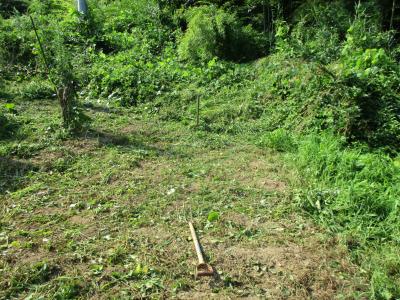 010802草刈り後