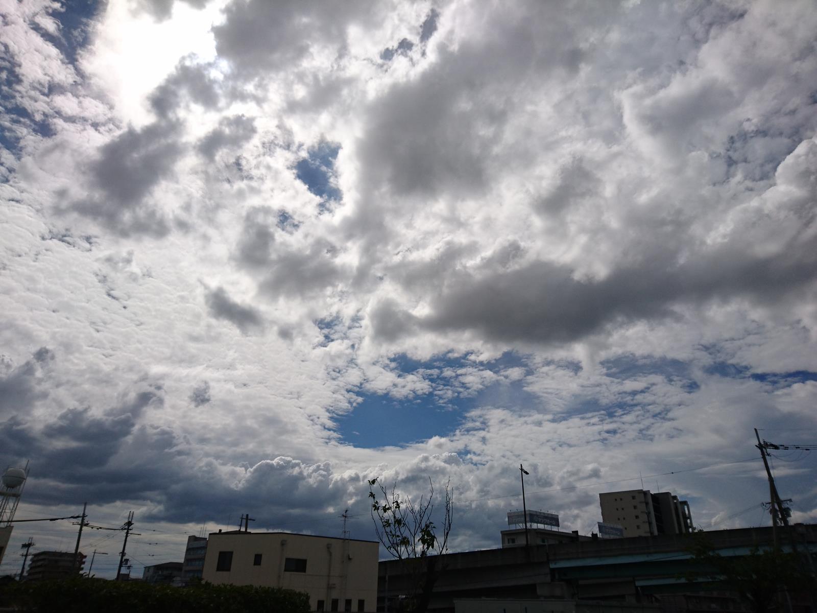 DSC_19102019sumaho (6)