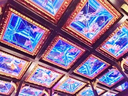 天井も金魚