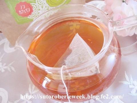 抗活性試験を実施!プレミアムグレード茶葉を採用した【べジストーリー グリーンルイボスティー】美味しくて続けやすい価格♪効果・口コミ。
