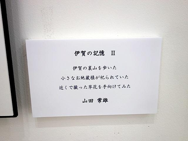 DSC03060-006.jpg