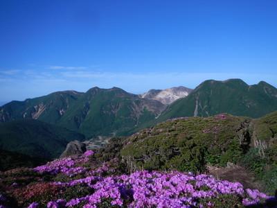 190611ミヤマキリシマと久住山 (17)