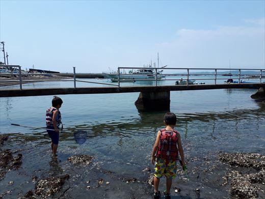 森戸海岸 (4)