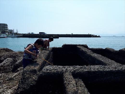 森戸海岸 (12)
