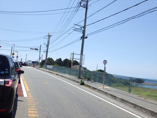 三浦半島釣り (6)