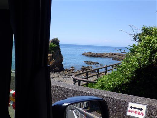 三浦半島釣り (7)