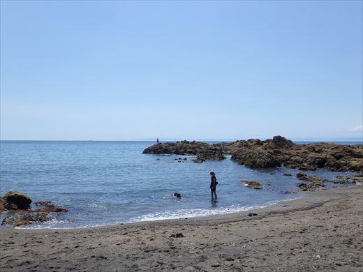 三浦半島釣り (10)