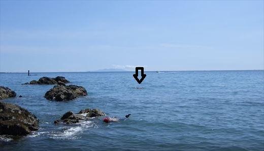 泳いで行く2_R