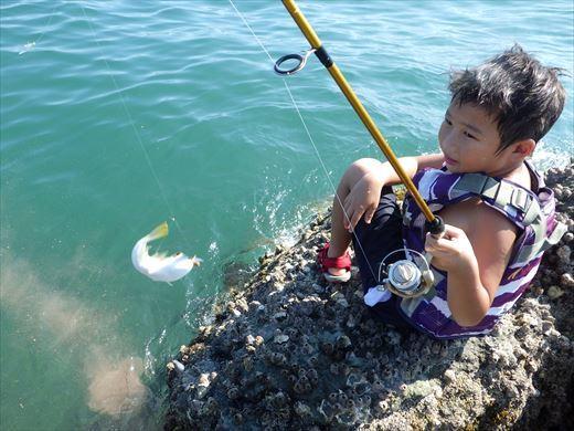 三浦半島釣り (17)