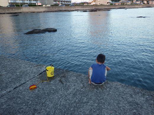 三浦半島釣り (31)