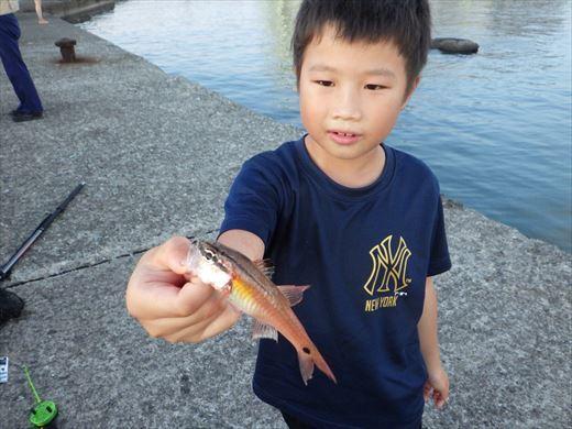 三浦半島釣り (37)