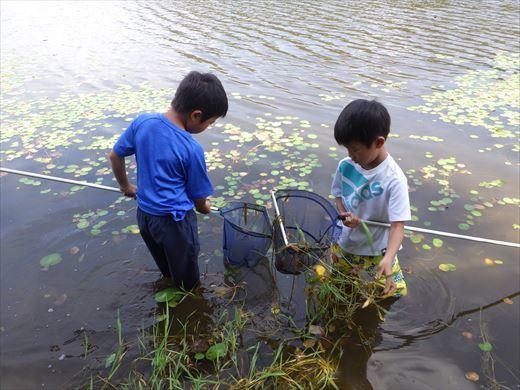 猪苗代湖 (9)