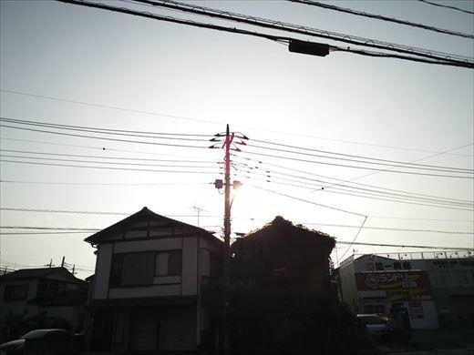 京葉スピードランド2019 (4)_R
