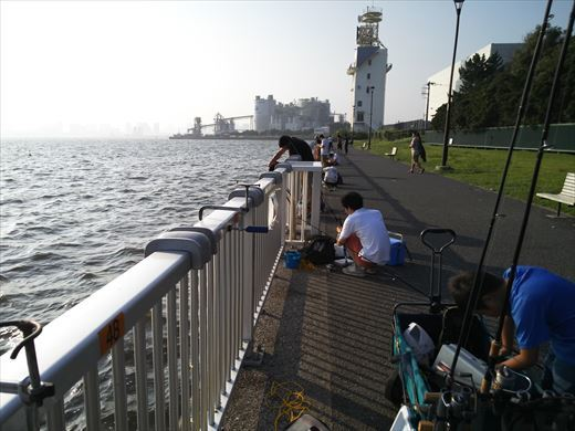 若洲海浜公園釣り (10)