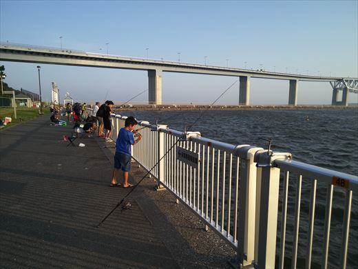 若洲海浜公園釣り (16)