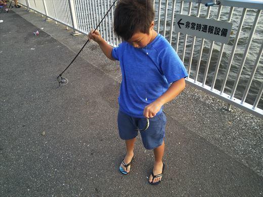 若洲海浜公園釣り (17)