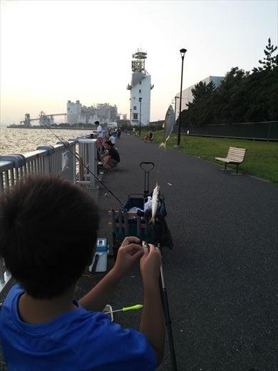 若洲海浜公園釣り (20)