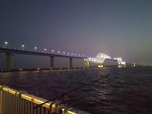 若洲海浜公園釣り (26)