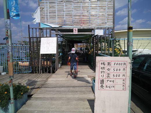 江戸川放水路でハゼ釣り? (6)