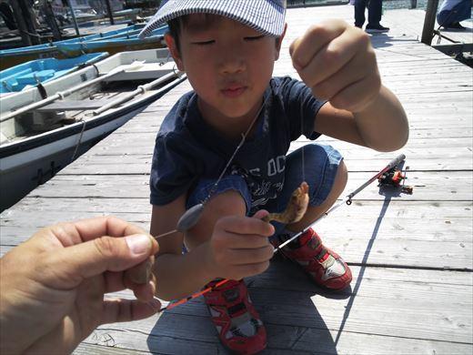 江戸川放水路でハゼ釣り? (10)