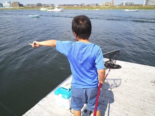 江戸川放水路でハゼ釣り? (11)