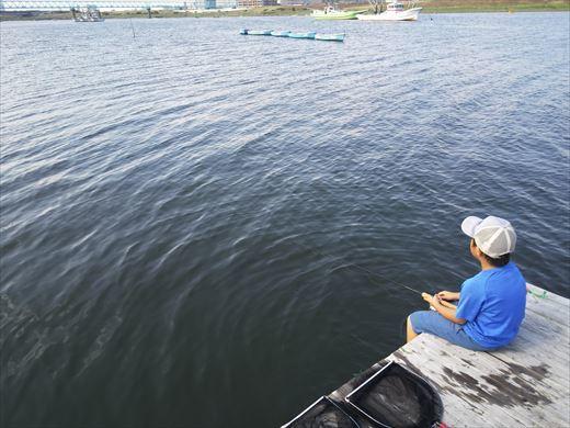 江戸川放水路でハゼ釣り? (23)