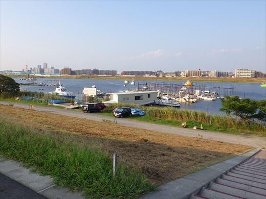 江戸川放水路でハゼ釣り? (33)
