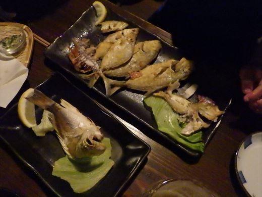 沖縄で釣って食べる! (25)
