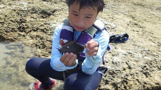 奥武島で泳ぎ釣り (4)