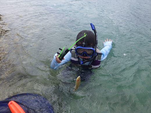 奥武島で泳ぎ釣り (7)