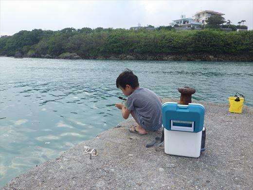 奥武島の堤防で (4)