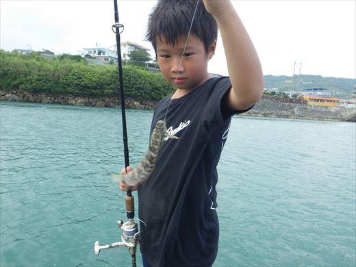 奥武島の堤防で (5)