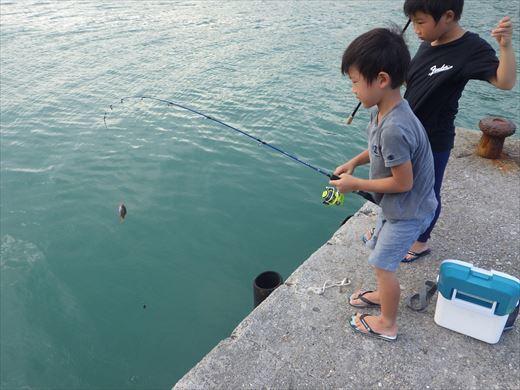奥武島の堤防で (7)