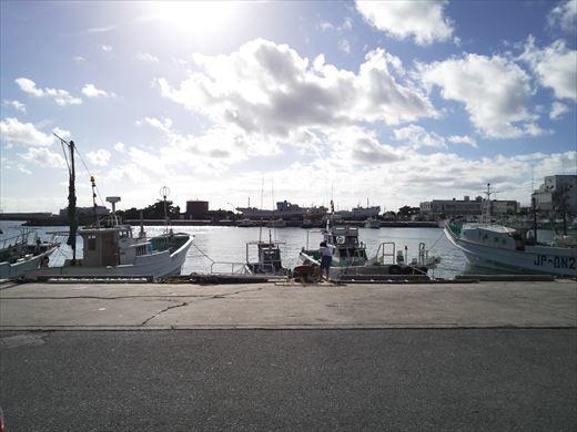 泊港でハリセンボン (2)