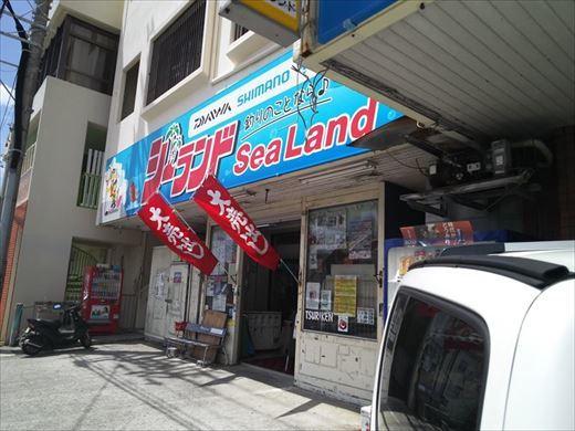 宜野湾漁港へ (10)_R