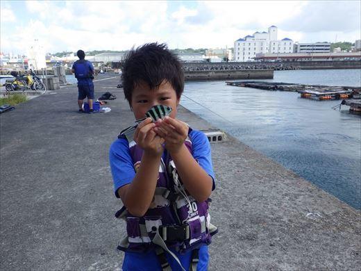 宜野湾漁港へ (16)_R