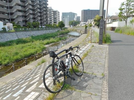 19_05_12-12miuichi.jpg